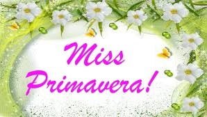 Miss da Festa da Primavera 2015
